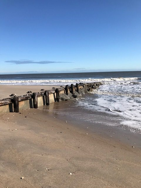 Beautiful walks on Edisto Beach and a lot to see there. Great RV/Camper Van Campground is located directly on the beach.
