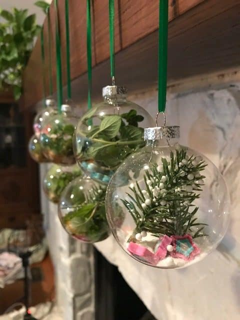 glass ornaments filled with leaves, moss or sand