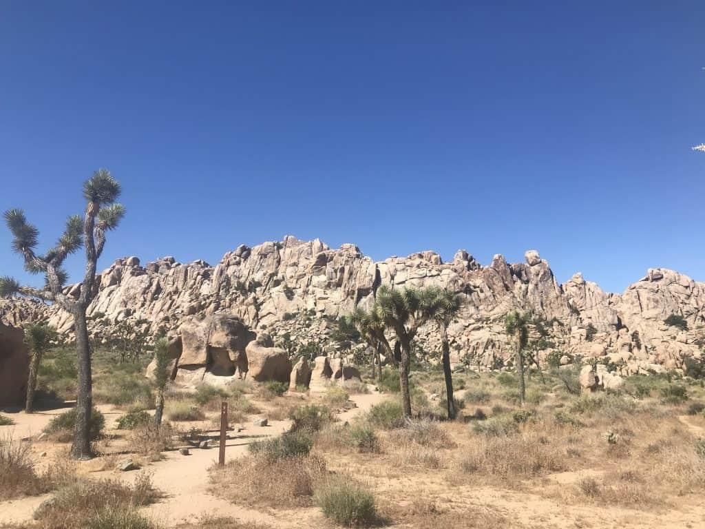 Hidden Valley Trail in Joshua Tree National Park