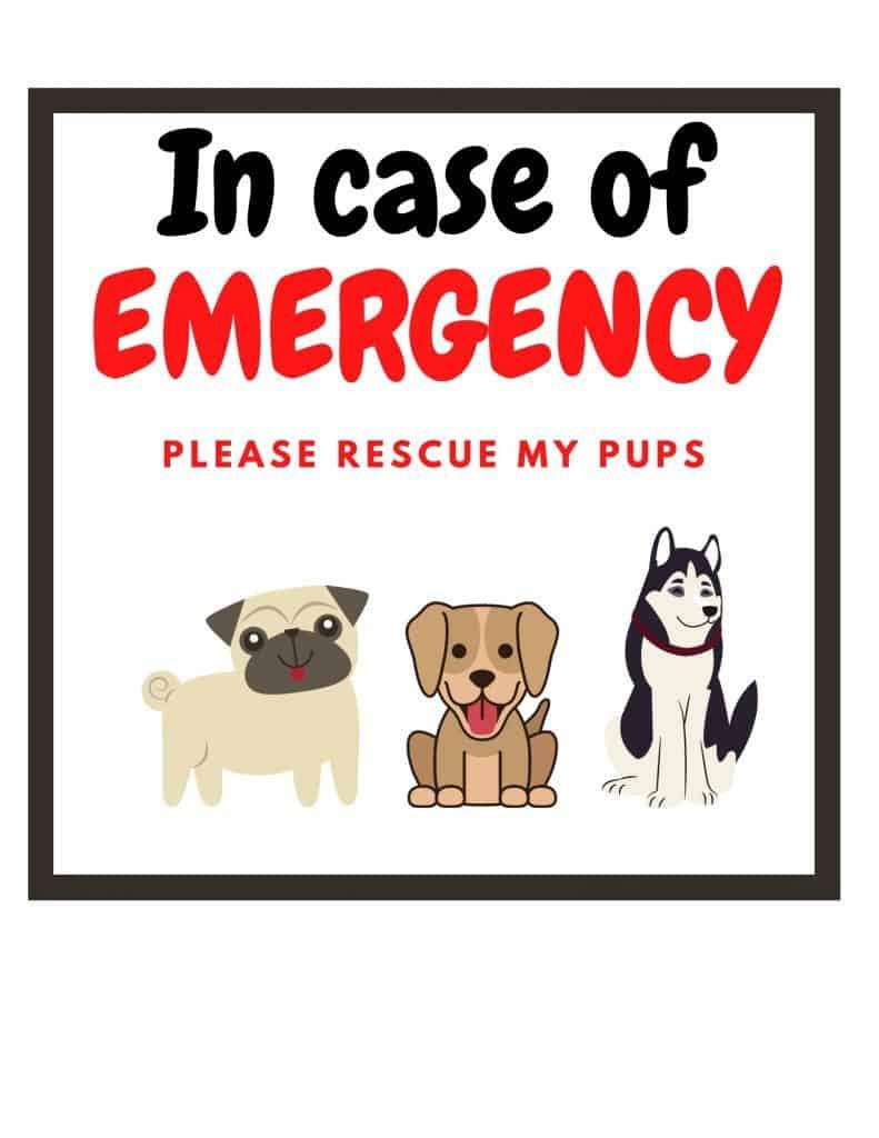Emergency dogs