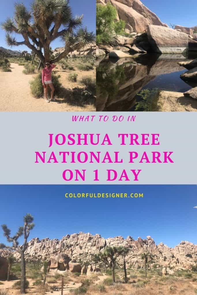 What to do in Joshua Tree National Park on 1 day