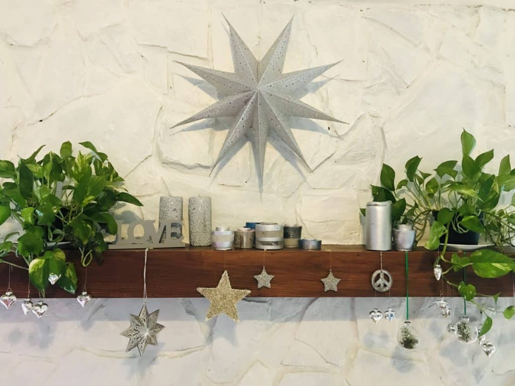 Plants on fireplace mantel